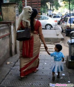 25 Indian Photos That Will Make You Laugh Hard No Matter How Many Times You Watch Them