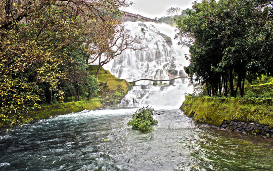 Offbeat Picnic Spots Near Mumbai Perfect for Monsoons - Bhandadara
