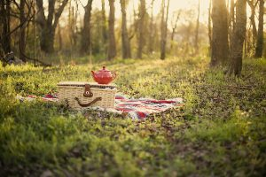 Picnic Spots in Mumbai for a Happy Day Out