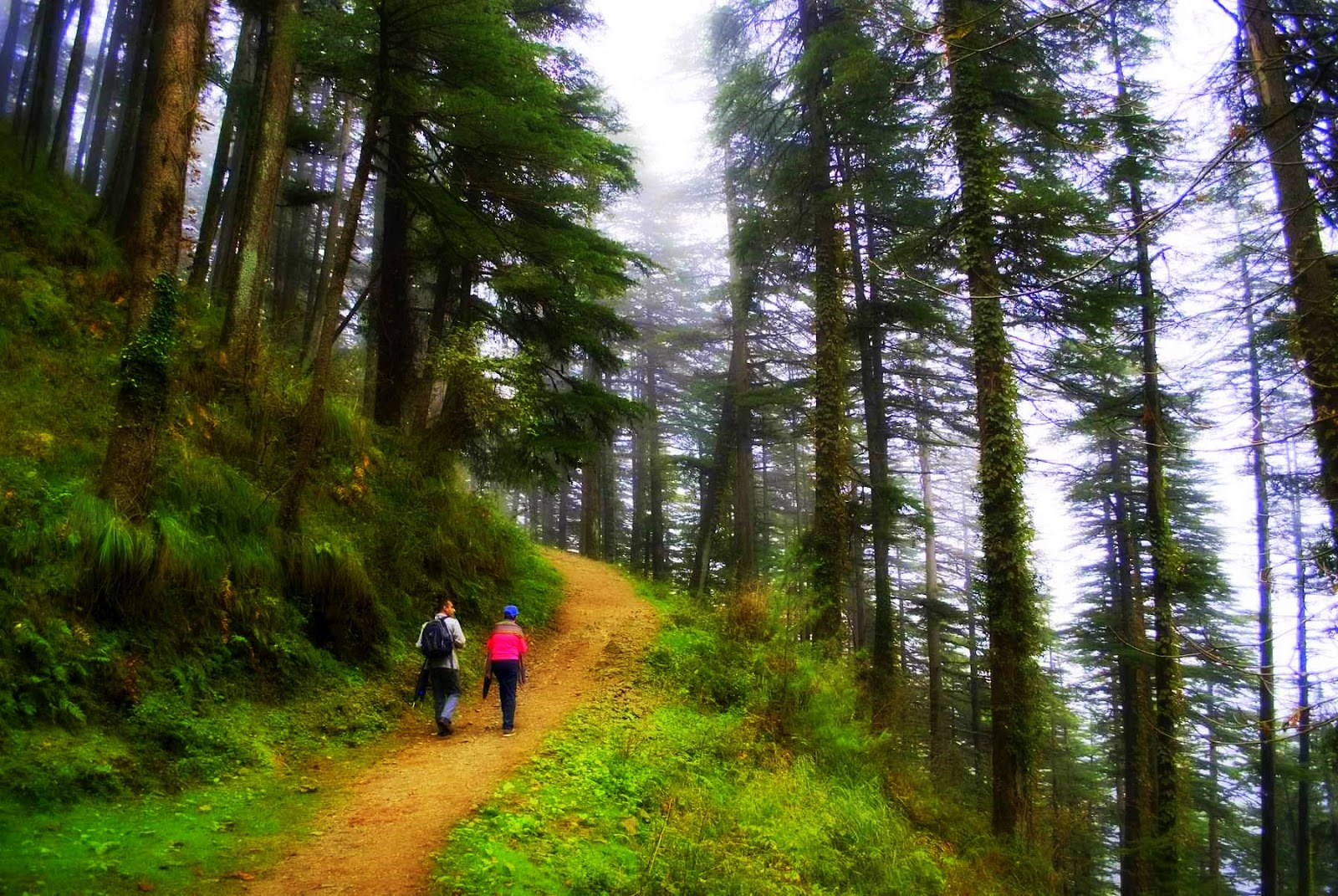 6 Romantic Destinations in Himachal Pradesh for an Unforgettable Honeymoon