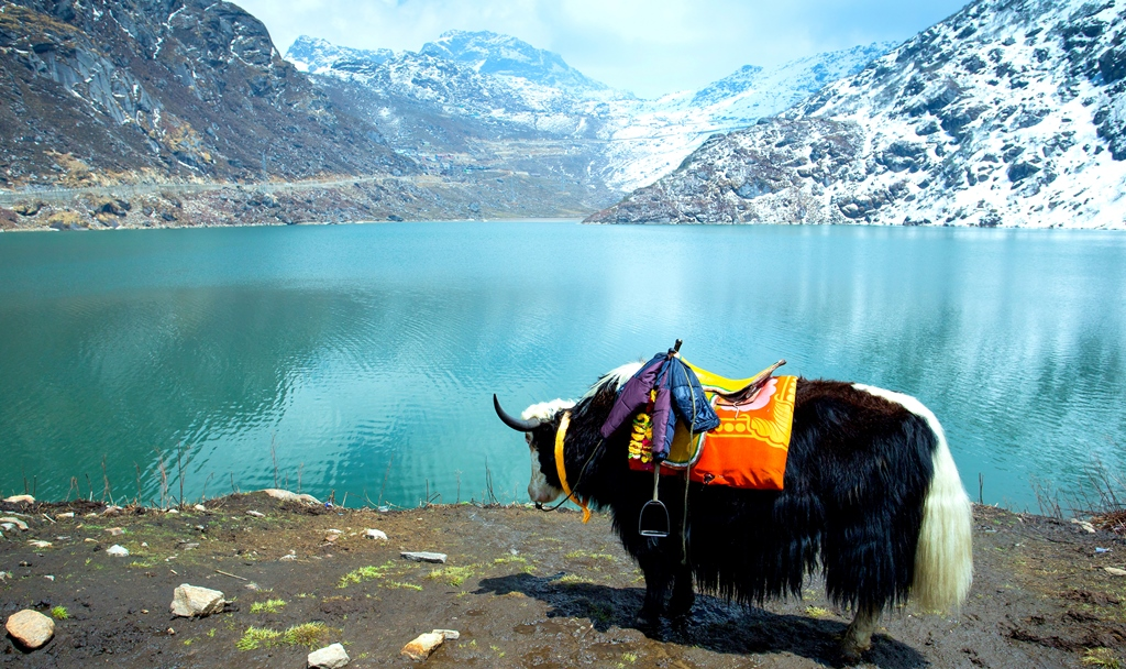 10 Best Himalayan Trekking Trails from Bhutan to India